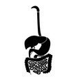 digestive system icon black color flat style vector image vector image