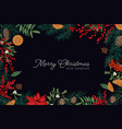 elegant frame or border made branches and cones vector image vector image