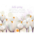 hello spring white flowers card watercolor vector image vector image