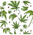 hemp pattern vector image