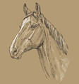 horse portrait-1 on brown background vector image vector image