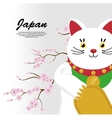 japanese culture cat lucky vector image vector image