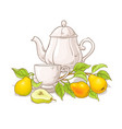 pear tea vector image