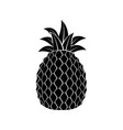 pineapple delicious fruit vector image