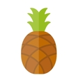 Pineapple isolated tropical healthy fruit sweet vector image vector image