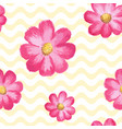 seamless floral pattern with pink cosmos flowers vector image