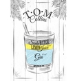 Tom Collins cocktail vector image vector image