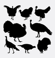 Turkey cock bird poultry animal silhouette vector image vector image