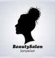 beauty salon icon silhouette woman with hair vector image vector image