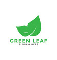 green leaf logo icon design template vector image vector image
