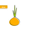 orange onion education card with black contour vector image