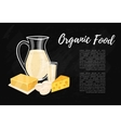 Organic food banner with dairy composition vector image vector image