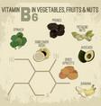 vitamin b6 food vector image vector image