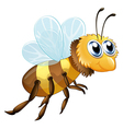 A six-legged insect