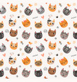 background with funny and cute cats vector image