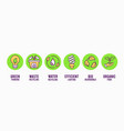 eco friendly green nature clean energy icon set vector image vector image