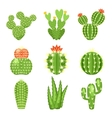 icon set of colored cactus and succulent vector image vector image