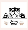 peeking otter - funny otter out - face vector image vector image