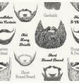 seamless pattern with beards and mustaches hand vector image vector image