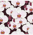 seamless pattern with white orchids vector image