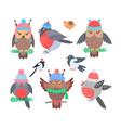 collection of birds icons vector image