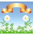 chamomiles landscape vector image