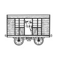 cow in railway carriage sketch engraving vector image