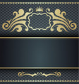 Floral elements ornate background vector image vector image