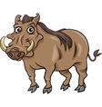 warthog animal cartoon vector image