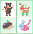 animals in warm clothes vector image vector image