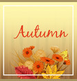 beautiful autumn flowers leaves bouquet yellow vector image