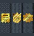 golden vintage pattern on dark background vector image vector image