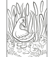 Kind duck and free little cute ducklings walk on t vector image