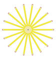 lead pencils vector image vector image