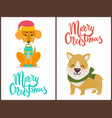 merry christmas banner congratulation from pets vector image vector image