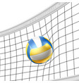 realistic beach volley ball in net isolated vector image vector image