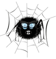 Spider in web vector image vector image