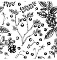 wild berries seamless pattern in engraved style vector image vector image