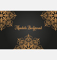 luxury mandala background concept vector image vector image