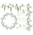 round frame with pretty white snowdrops festive vector image vector image