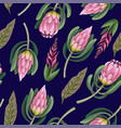 seamless pattern with proteas flowers trendy vector image vector image