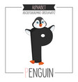alphabet letter p and penguin vector image