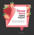 banner strawberry organic vector image