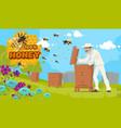 beekeeping and beekeeper honey production farm vector image vector image