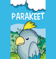 cute parakeet in forest cartoon vector image vector image