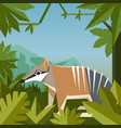 flat geometric jungle background with numbat vector image vector image
