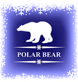 polar bear blur vector image