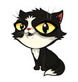 smiling black cat with big yellow eyes vector image