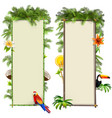 tropical boards set 2 vector image vector image