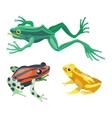 Frog cartoon tropical animals vector image vector image